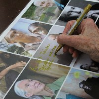 珍古德與黑猩猩的際遇 環保與保育的人生哲學