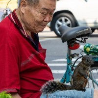 Photo of the Day: Old man and pet squirrel in Taipei