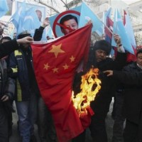 Hard-hitting DPP video supports Uyghurs