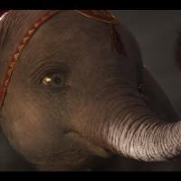 迪士尼新Dumbo影片有洋蔥 非政府組織籲提高大眾動保意識