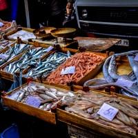 市售魚標示真偽 陽明大學運用「微基因條碼」大揭密