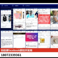 Source of FB zombie accounts invented by Chinese company identified: report