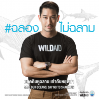 New WildAid Campaign Urges Thailand to Say No to Shark Fin at Weddings