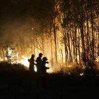 澳洲遭熱浪侵襲 昆士蘭州發生連環森林大火