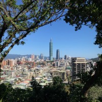 Photo of the Day: View of Taipei 101 through trees