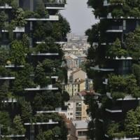 為灰色天空添綠意 米蘭擬於2030年前種300萬棵樹