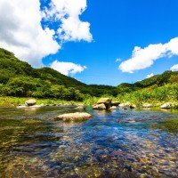12 Taiwan national forest recreation areas accept mobile payments
