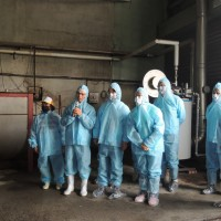 中國非洲豬瘟疫情達100例 賴揆: 台灣養豬場各環節都要把關