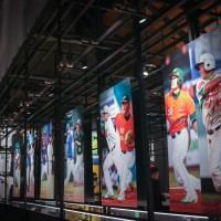 Exhibition celebrating Taiwan's professional baseball games opens in Taipei