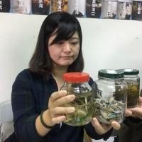 調查指出:台灣海域佈滿塑膠微粒 八掌溪口密度最高