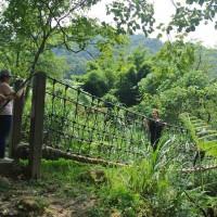 「因為台灣也是我們的家」 印尼移工組團淨山林