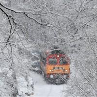 歐洲多國遭暴風雪侵襲 至少已13人死亡