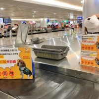 Taiwan tightens border inspections against African swine fever