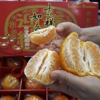 Taiwan exports honey oranges and cabbages to Singapore