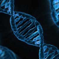 北極發現超級細菌基因 能抵禦所有抗生素