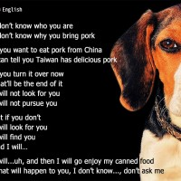 Taiwan designs 'Beagle Brigade' posters to warn travelers about ASF in multiple languages