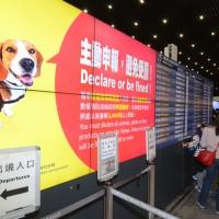 松山機場棄置箱之江蘇豬肉乾 檢出非洲豬瘟病毒