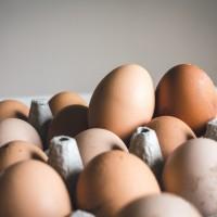 全台鬧蛋荒 23日起進口460萬顆雞蛋救急