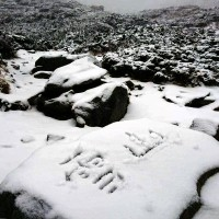 Taiwan's Xueshan sees 10 cm of snow