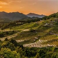 簡又新專欄 – 對抗氣候變遷 從農耕開始轉型