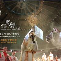 教宗方濟各特使訪臺 將會見蔡英文