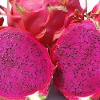 Taiwanese researchers discover dragon fruit best organic source for dye-sensitized solar cells