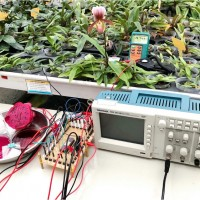 嘉大以火龍果製成染敏化太陽能電池 登上國際期刋