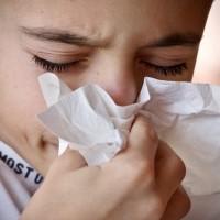 WHO示警:下一次致命流感爆發「只是時間問題」
