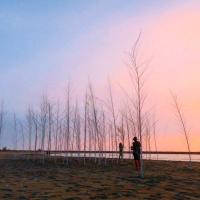 夕陽、海灘、市集!漁光島藝術節打造「新樂園」 歌后徐佳瑩開幕晚會獻唱