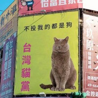 Photo of the Day: Purrfect Taiwanese political party