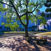 世界大學社會影響力排名 慈濟大學與台大分居台灣冠亞軍
