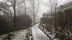 上山追雪先搞懂 雪霰霧淞大不同