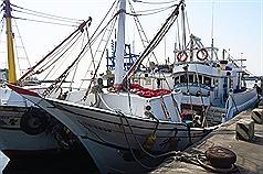 雇北韓漁工遭美點名 外交部:漁船靠港後不再續聘