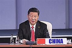 美媒時評:國際社會爲何放任習近平迫害維吾爾人?