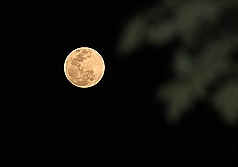 Meteorologist predicts clear sky, full moon for central, southern Taiwan on Moon Festival