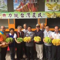 義美收購200噸香蕉入庫 高志明:平穩價格助蕉農